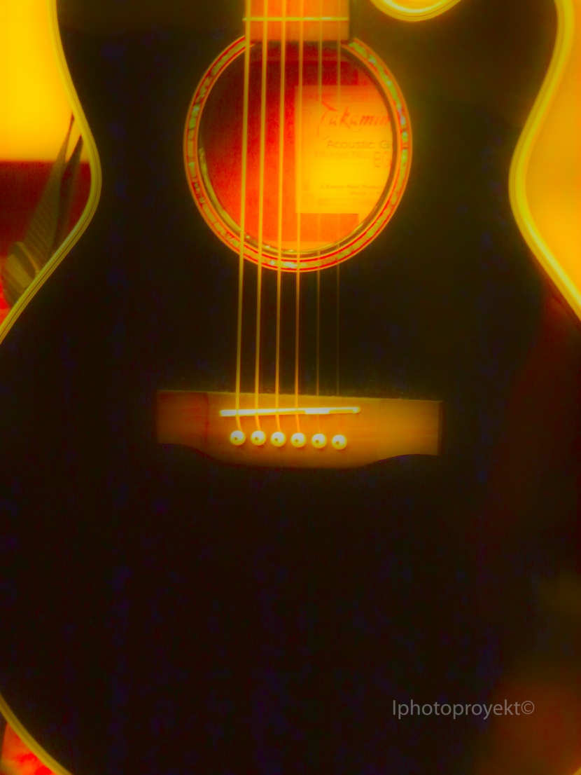 Guitar445